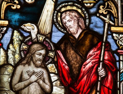 Festividad de San Juan Bautista, Patrono de la Orden de Malta – Rezo del Santo Rosario